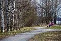 Halkoniemessä, nokialla. 4 - panoramio.jpg