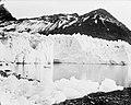 Hamberg Glacier, Moraine Fjord, South Georgia (4793353614).jpg