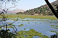 Hartbeespoort Dam, North West (South African province).jpg