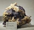 Harvard Museum of Natural History. Fluorite. Ovideo (Asturias), Spain (DerHexer) 2012-07-20.jpg
