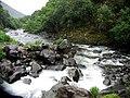 Hawaii Creek.jpg
