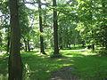 Herálec, park u zámečku.jpg