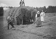 Old photo of hay wagon