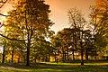 High Park autumn - panoramio.jpg