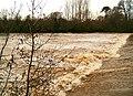 Higher Weir River Exe - geograph.org.uk - 1069354.jpg