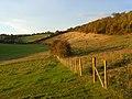 Hillside, Bledlow Ridge - geograph.org.uk - 1024339.jpg
