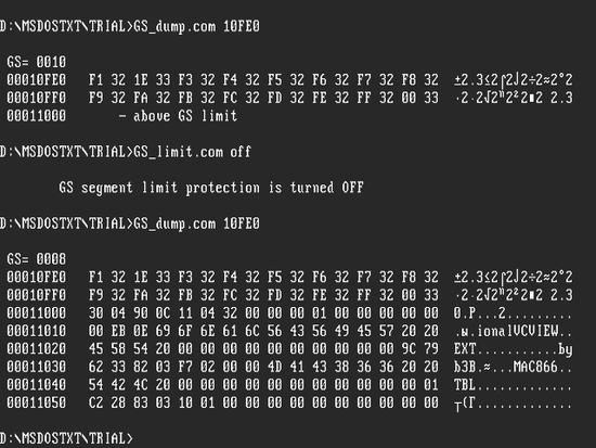 First steps towards system programming under MS-DOS 7