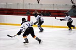 Hockey 20081005 (5) (2917370129).jpg