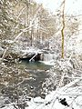 Hominy Falls after a spring snow.jpg