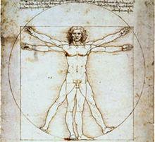 Homme de Vitruve de Léonard de Vinci