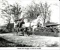 Horse and Buggy in Dublin New Hampshire (5083927697).jpg