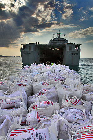 HMAS Choules (L100) - Humanitarian supplies being unloaded from Largs Bay at Haiti