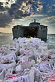 Humanitarian Supplies are Delivered to Haiti from the UK MOD 45151172.jpg