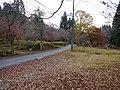 Hyakusaiji Kocho, Higashiomi, Shiga Prefecture 527-0141, Japan - panoramio (3).jpg