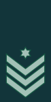IDF Ranks Ranag.svg