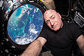 ISS-44 Scott Kelly seen inside the Cupola.jpg