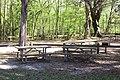 Ichetucknee Springs State Park picnic tables.jpg