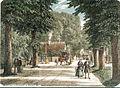 Illustreret Tidende - Charlottenlund Skov.jpg