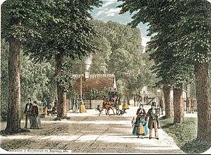 Charlottenlund - A scene from Charlottenlund Forest