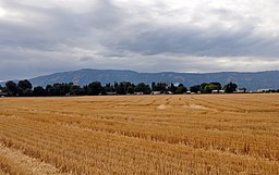 Imbler, Oregon, fields.jpg