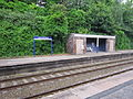 Ince and Elton railway station (21).JPG