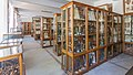 Institutul Botanic, Muzeul Botanic, Cluj-Napoca-9955.jpg