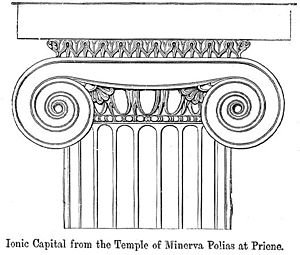 Capital (architecture) - Ionic capital, from the temple of Athena Polias, Priene, Ionia, in a 19th-century engraving