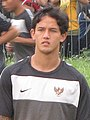 Irfan Bachdim (crop).jpg