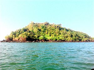 Basavaraj Durga Island - View of south east part of the island from 100m distance