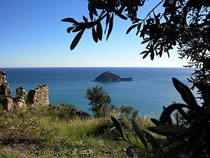 Gallinara - Gallinara Island