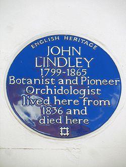 Photo of John Lindley blue plaque