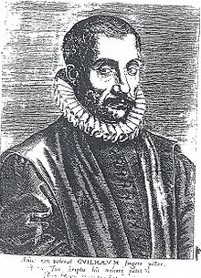 Portrait de Jacques Guillemeau