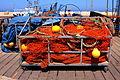 Jaffa Port (19820534624).jpg