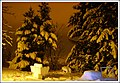 Januarska noc u sokaku mom Nenad sakovic Kex - panoramio - Nenad Sakovic.jpg