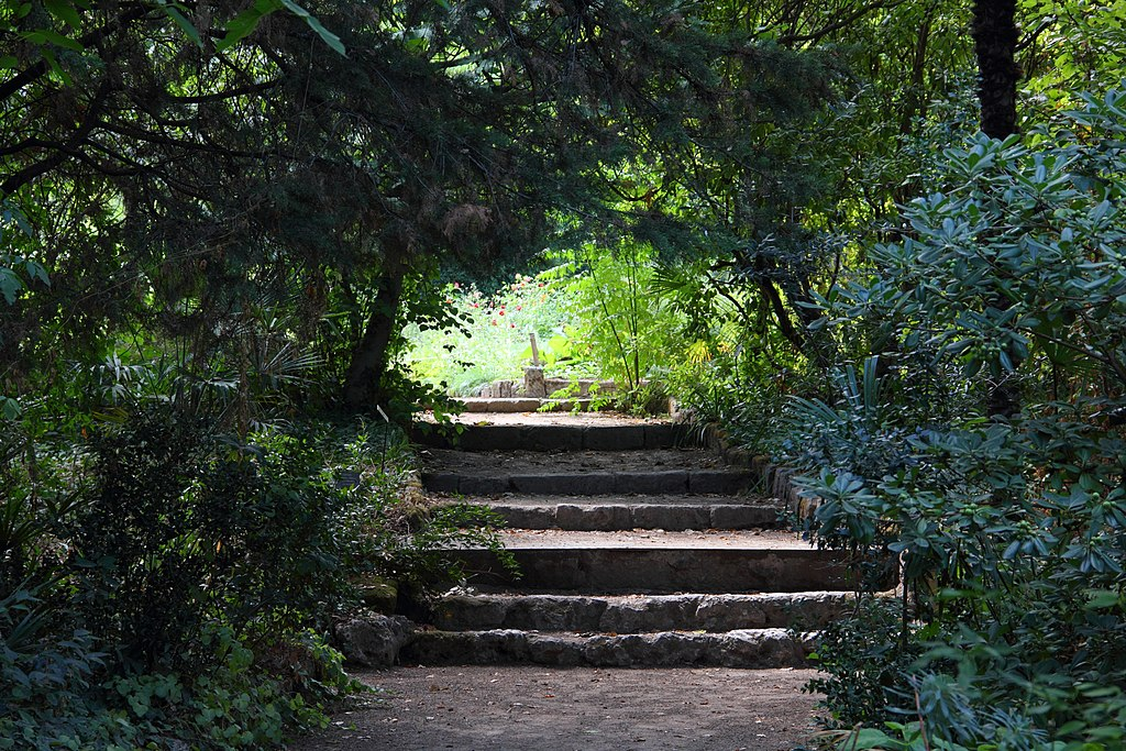 File jardin des plantes montpellier jpg wikimedia commons for Jardines des plantes