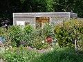 Jardins familiaux7.JPG