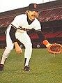 Joe Pettini 1983.jpg