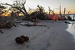 Joint Base Charleston EOD responds to Civil War era UXO 161009-F-CC297-0250.jpg