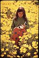 KATHY MARTIN CARRYING A PLANT HOME FROM SCHOOL THROUGH A FIELD OF YELLOW POPPIES - NARA - 542703.jpg