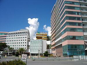 Kameda Medical Center 02.JPG
