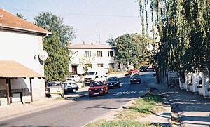 Sremska Kamenica - Image: Kamenica 04