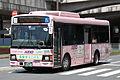 KeioBusMinami J20912 TamaCity-Minibus.jpg