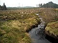 Kelty Water in Loch Ard Forest - geograph.org.uk - 1295374.jpg