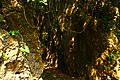 Kenting National Park WAN,CHIA-LIANG萬家良 1017672.jpg