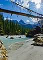 Kicking Horse River, a view from the silty beaches.jpg