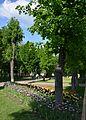 Kirovograd Dendropark 12 (YDS 4211).JPG