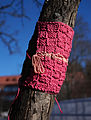 Knitting around tree.jpg