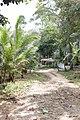 Ko Chang, Ko Chang District, Trat, Thailand - panoramio (45).jpg