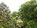 Kordara, Madhya Pradesh 485446, India - panoramio (12).jpg