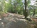 Kosy, Szlak Kaszubski (Trail Kashubian) - panoramio (4).jpg